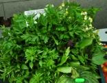Smaržu un garšu buķete no Valentīnas Svarinskas.