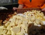 Nevienam nebija tāda pakša siera, kā Ilzeskalnam!
