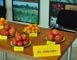 Seminārs tomātu audzētājiem 2012.04.09.