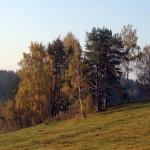 Lendžu pagasts
