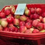 Sulīgi āboli no Čornajas pagasta