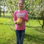 Sintija Gutāne pētī kartupeļus un piedalās konkursā Audzēsim kartupeļus