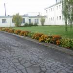ilzesk1