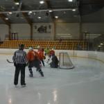 hokejs1