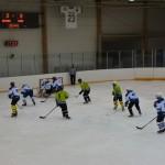 hokejs3