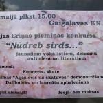 IMG_7935