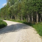 Lendžu-pagasta-ceļš-pēc-pārbūves