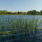 Lielais Svieteņu ezers