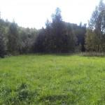 luznizsol1